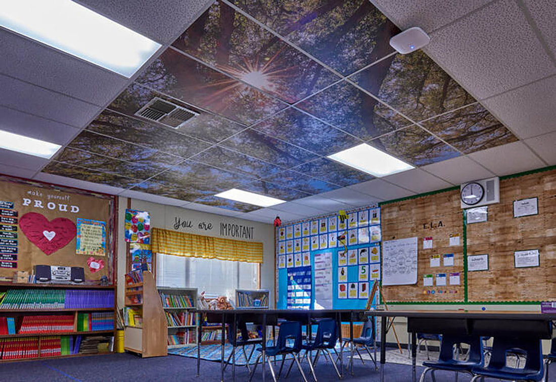 Classroom with ceiling mural